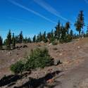Timberline trail is still snow-free