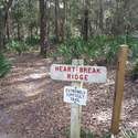A very different Heartbreak Ridge Trail!